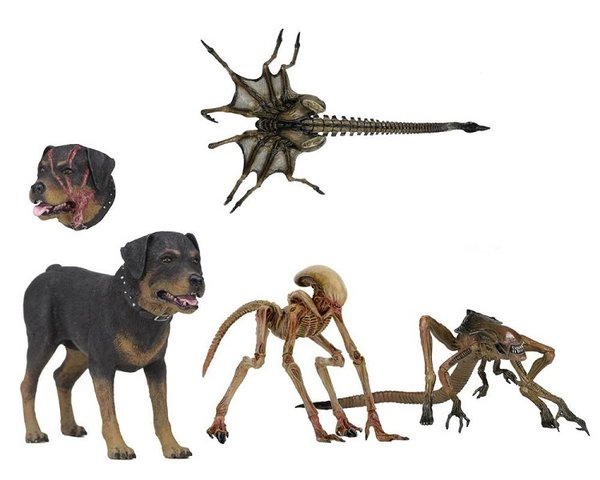 Alien 3 Set a4 Accessory Creature Pack zubehör action figur neca Neu